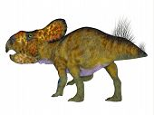 Protoceratops Male Dinosaur Tail 3d Illustration - Protoceratops Was A Herbivorous Ceratopsian Dinos poster