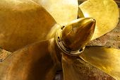 Bronze six bladed propeller screw of a boat or ship. The brass ship screw propeller helps in ship na poster