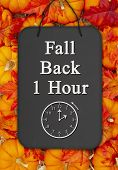Fall Back 1 Hour Time Change Message On A Chalkboard Sign On Pumpkins With Fall Leaves And A Straw H poster