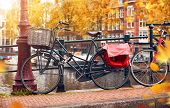 Bike over canal Amsterdam city autumn yellow leaf fall. Picturesque town landscape in Netherlands wi poster