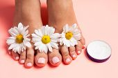 Womans Perfect, Groomed Feet With Of Natural Herbal Cream. Love A Feet. Beautiful Flowers On Pink B poster