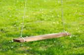Empty Wooden Swing In The Garden