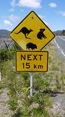 image of promontory  - australian road sign - JPG