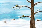 stock photo of chickadee  - Black capped Chickadee birds on a tree - JPG
