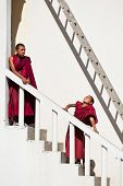 Tibetan Boys, Novice Buddhist Monks. India