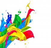 Colorful Paint Splash Isolated on White Background. Abstract Colored Splashing. Multicolor Paint Spl