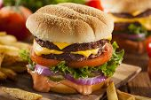 picture of cheese-steak  - Beef Cheese Hamburger with Lettuce Tomato and Onions