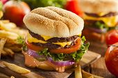 pic of hamburger-steak  - Beef Cheese Hamburger with Lettuce Tomato and Onions