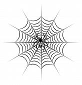 pic of black widow spider  - spider on web in tribal style for tattoo - JPG