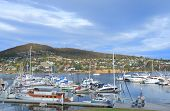 Yacht harbor in Hobart Tasmania