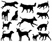 image of hound dog  - Dogs vector silhouettes - JPG