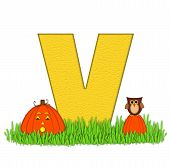 Alphabet Pumpkin Patch V