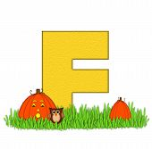 Alphabet Pumpkin Patch F