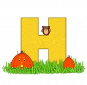 Alphabet Pumpkin Patch H