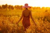 picture of beatitudes  - Slender woman in a hat walking through fields of flowers - JPG