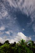 picture of moonlight  - Rainforest treetops and starry sky with clouds in moonlight at borneo malaysia - JPG