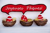 picture of easter basket eggs  - Three Red Dotted And Striped Easter Eggs In Easter Baskets Or Nest On White Wooden Background With Comic Speech Balloon With French Text Joyeuses Paques Means Happy Easter Used As Easter Decoration Or Easter Greetings - JPG