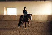 image of saddle-horse  - Young woman training brown horse in riding hall  - JPG