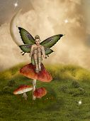image of fairy-mushroom  - fairytale scene in the field with big mushroom - JPG