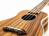 stock photo of ukulele  - Ukulele on white background - JPG