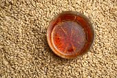 pic of malt  - Tumbler glass with whiskey standing on barley malt grains - JPG