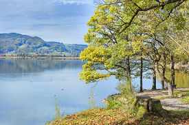 foto of bavaria  - Image of a park with trees and meadow at lake Kochelsee in Bavaria Germany - JPG