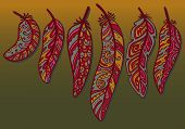 picture of feathers  - Vector colored feathers set - JPG