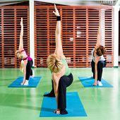 picture of virabhadrasana  - Girls practicing yoga - JPG