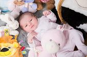 stock photo of born  - Close up of new born baby with cute expression - JPG