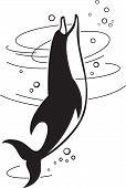 foto of porpoise  - Vector illustration of the jumping dolphin - JPG