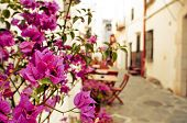 pic of charming  - view of a charming street of Cadaques - JPG