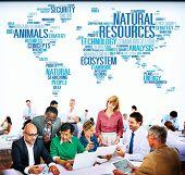 image of environmental conservation  - Natural Resources Conservation Environmental Ecology Concept - JPG