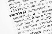 pic of survival  - A Dictionary definition of the word Survival - JPG