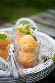 pic of mints  - Homemade sorbet with tropical fruits and mint - JPG