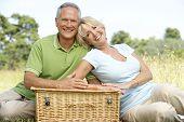 Постер, плакат: Пожилые пары имеющие пикник в сельской местности