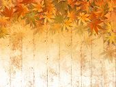 Fall leaf border background - abstract thanksgiving pattern poster