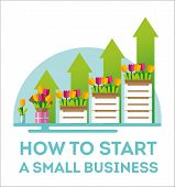 Infographic Small Business. The Emergence Of Small Business. Flowers As The Birth Of A Small Busines poster