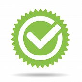 Green Tick Mark Icon Vector Illustration Isolated On White Background. Check Mark Icon. Tick Sign. G poster