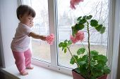 Curiosity Childness. Curious Baby Girl Full Body In Pink Clothes One Year Old On The Window With Ger poster