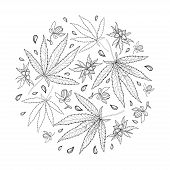 Vector Round Bunch Of Outline Cannabis Sativa Or Cannabis Indica Or Marijuana. Leaf, Flower And Seed poster