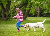 Little Girl With Labrador Retriever On Walk In Park. Child Is Running On Green Grass With Dog - Outd poster