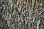 Thatched Roof, Hay Or Dry Grass Background. Grass Hay, Roof Texture. Dry Straw, Roof Background Text poster