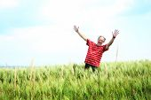 picture of senior men  - Happy senior man with hands up in a wheat field - JPG