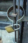 Iron Gate Lock With Lock. Lock On A Chain Hangs On A Gate. poster