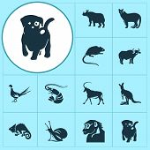 Zoo Icons Set With Antelope, Ox, Puppy And Other Joey Elements. Isolated Illustration Zoo Icons. poster