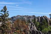 The Forest And Rock Landscape Of Custer State Park As Seen From The Trail To Black Elk Peak, Formerl poster