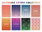 Admirable Covers Collection. Admirable Geometric Patterns. Charming Vector Illustration. poster