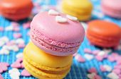 picture of flavor  - some appetizing macarons with different colors and flavors on a blue background - JPG