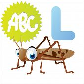 stock photo of locusts  - L is for Locust - JPG