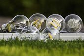 picture of diodes  - various E27 bulbs LED halogen and tungsten bulb on solar panel some on the grass  - JPG